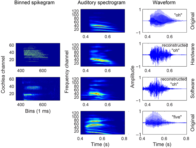 Frontiers | Reconstruction of audio waveforms from spike trains of