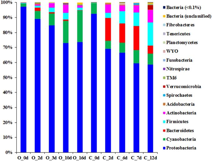bacteria community succession in milk