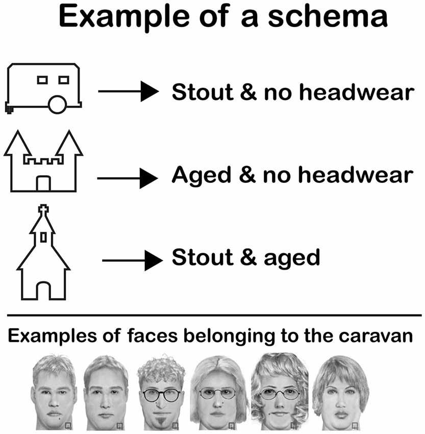 Schema (psychology)