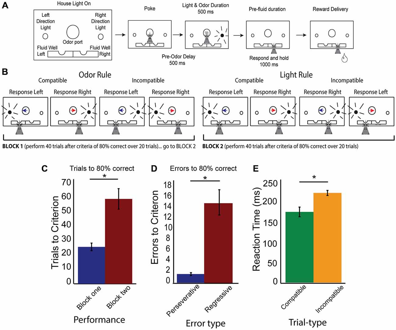 Frontiers Neural Correlates Of Rules And Conflict In Medial 587 Block Signal Wiring Diagram