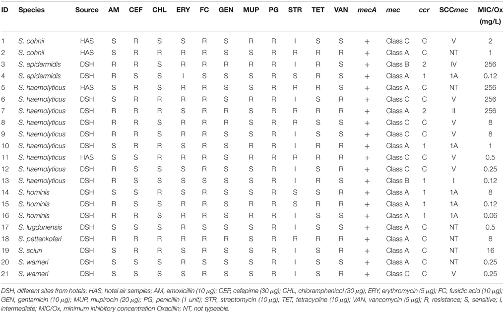 Frontiers Antibiotic Resistance And Meca Characterization Of Coagulase Negative Staphylococci Isolated From Three Hotels In London Uk Microbiology