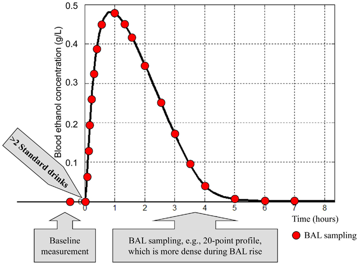 Frontiers In Silico Models Of Alcohol Dependence And