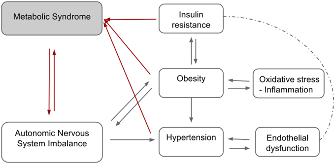 hyperuricemia and its relationship with metabolic syndrome