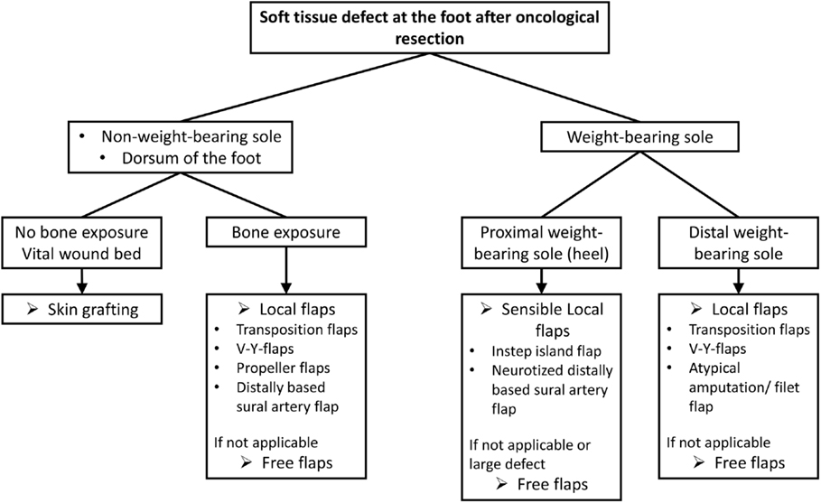 Frontiers | Reconstruction of Soft-Tissue Defects at the Foot and ...