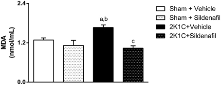 Frontiers - Inhibition of PDE5 Restores Depressed ...