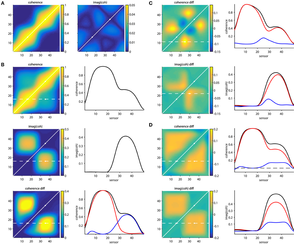 Frontiers | A Tutorial Review of Functional Connectivity Analysis