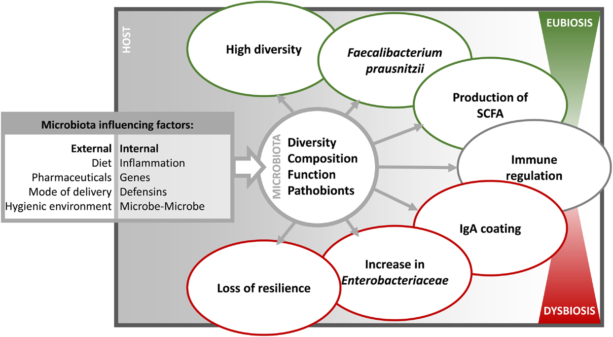 diversity internal and external factors management