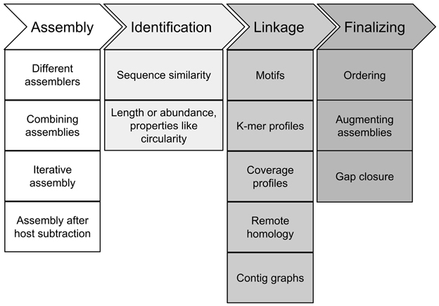 Frontiers | Recovering full-length viral genomes from