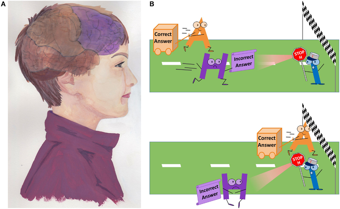 Figure 2 - A. The prefrontal cortex is shown here in purple, at the very front of the head (painting by Morgane Peyou, association Espace Créativité).