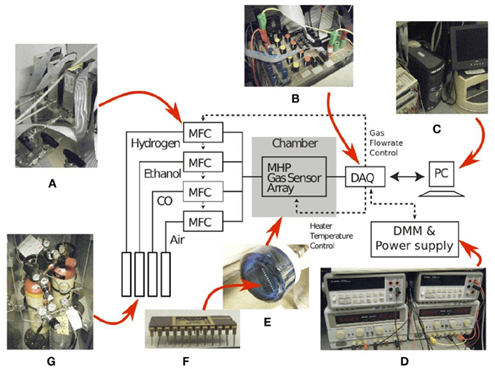 Frontiers Glomerular Latency Coding In Artificial