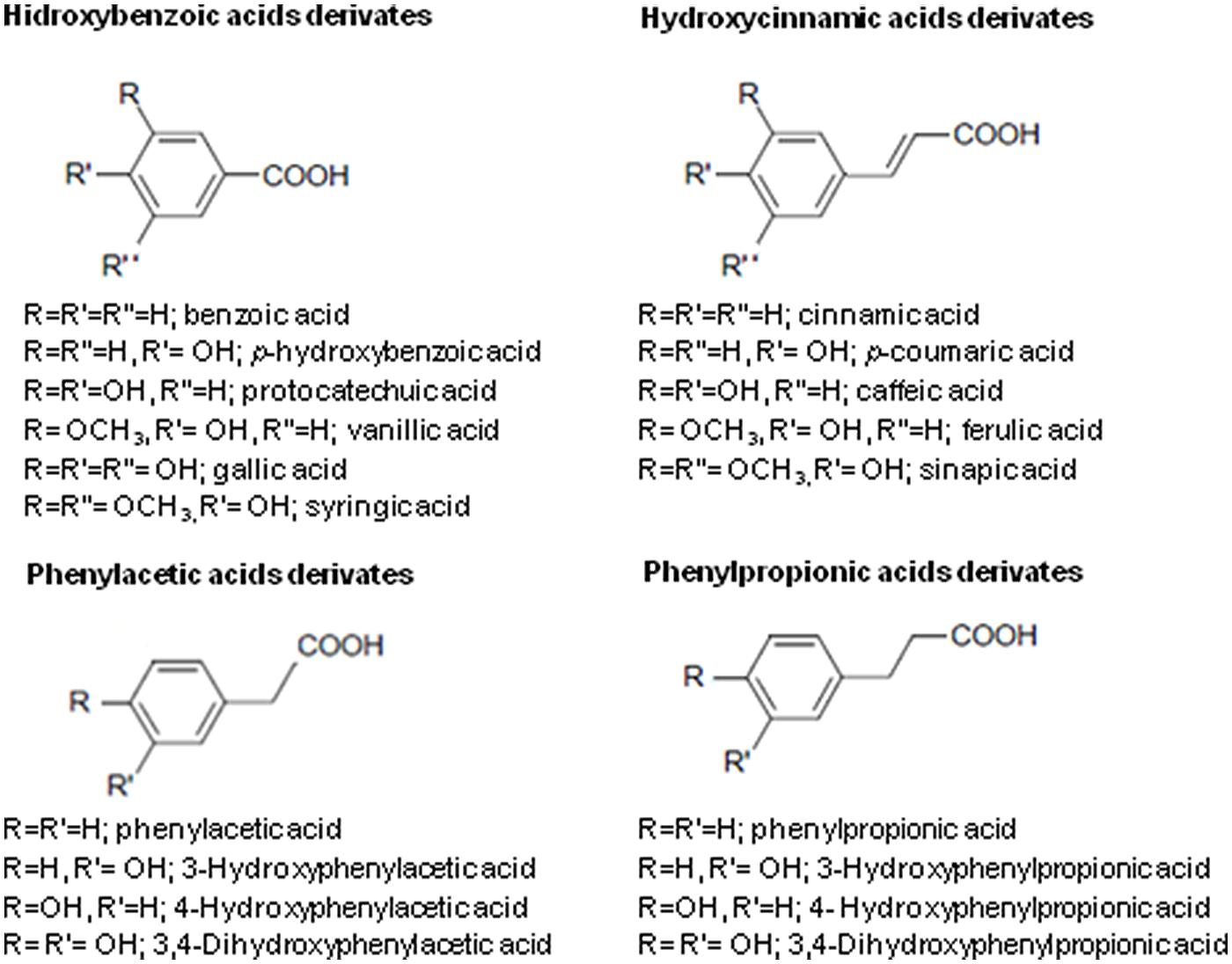 Frontiers   Potential Use of Phenolic Acids as Anti-Candida