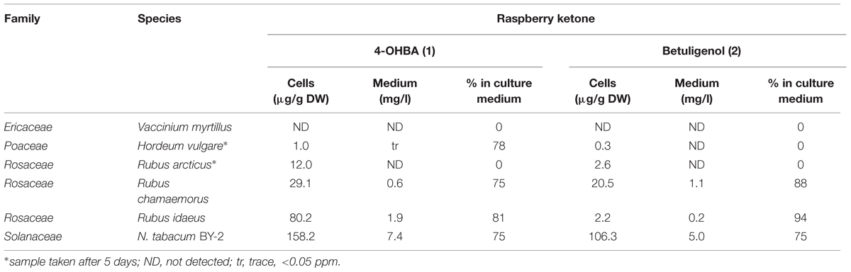 Frontiers | Bioconversion to Raspberry Ketone is Achieved by