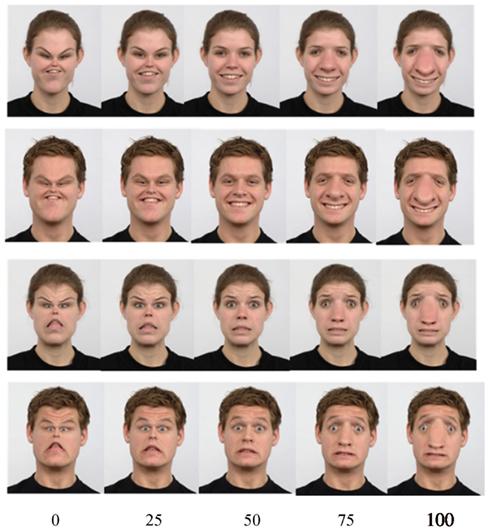 Facial Emotion Test 78