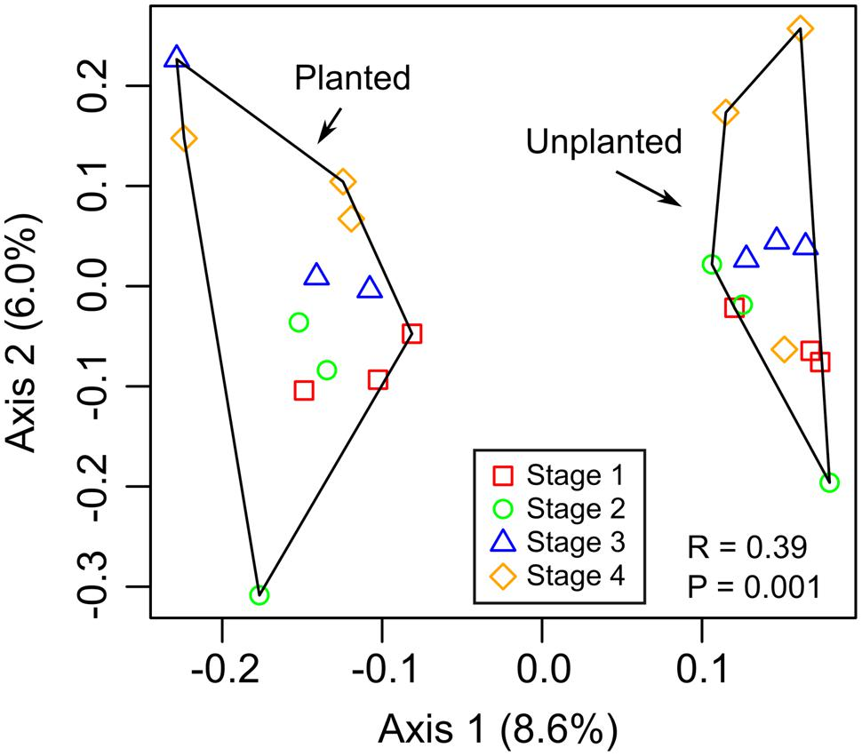 Frontiers | Microbial Community Structure in the Rhizosphere of Rice