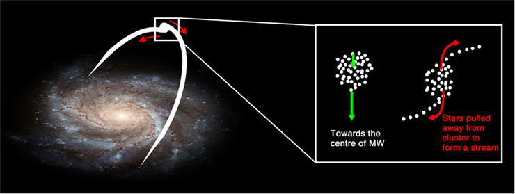 Figure 3 - How a stream of stars form under the Milky Way's tidal force.