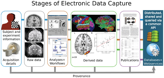 Electronic Data Capture Clinical : Frontiers data sharing in neuroimaging research