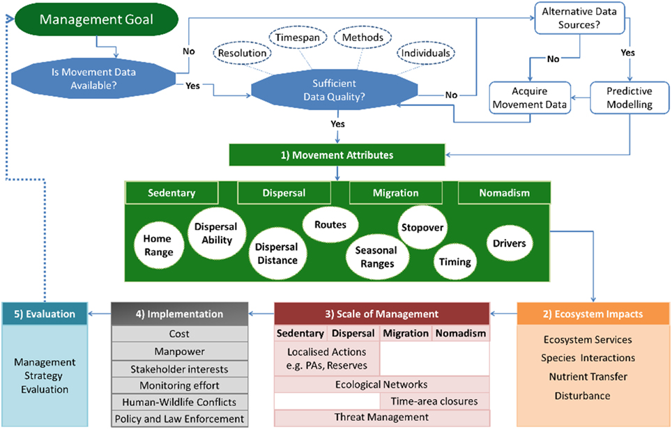 Frontiers Linking Movement Ecology With Wildlife Management And