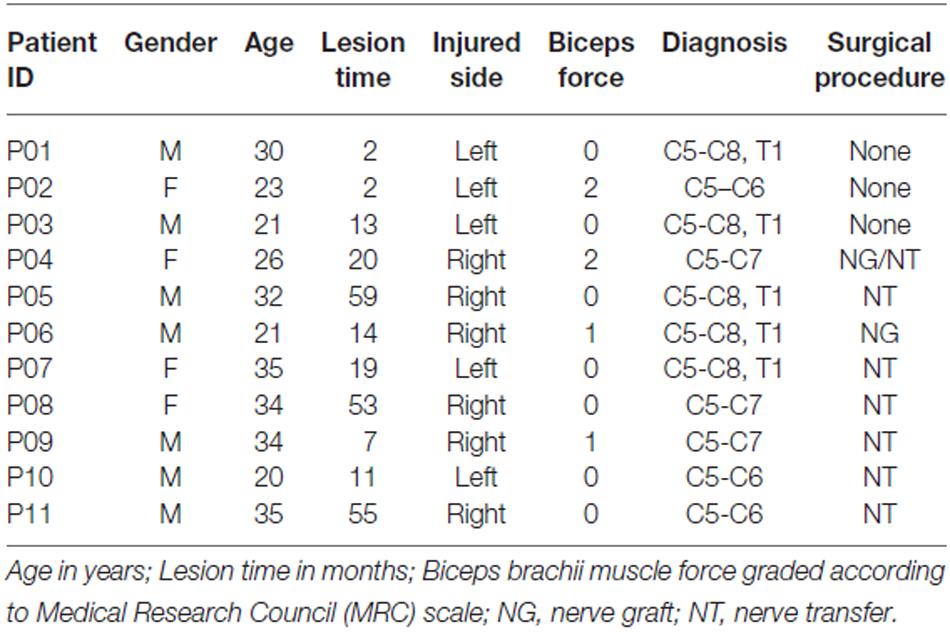 frontiers balance impairments after brachial plexus injury as