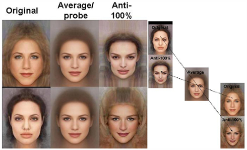 Adaptation to natural facial categories