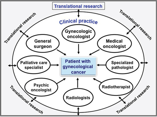 Frontiers | The Relevance of Gynecologic Oncologists to