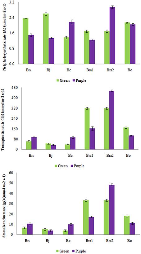 intraspecific brassica rapa The evolutionary genetics and adaptive significance of intraspecific variation in pollen grain size in brassica rapa l.