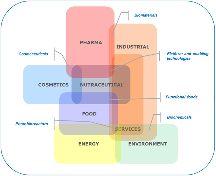 nutraceuticals international essay This paper will focus research what software do i need to write an essay - nutraceuticals to improve nutraceuticals - international research journal of.