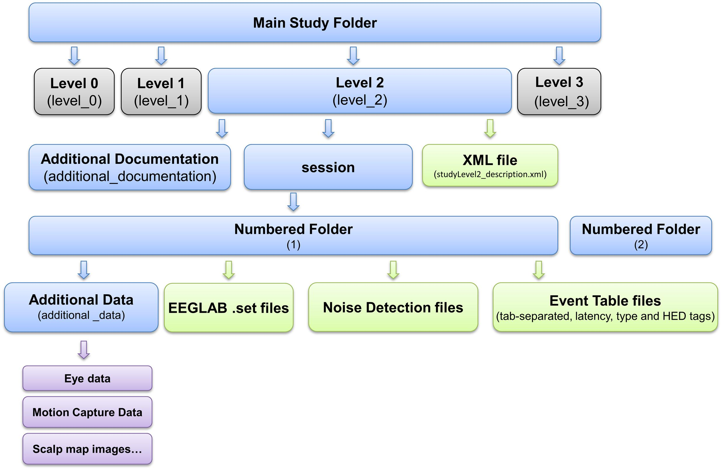 Frontiers | Preparing Laboratory and Real-World EEG Data for Large