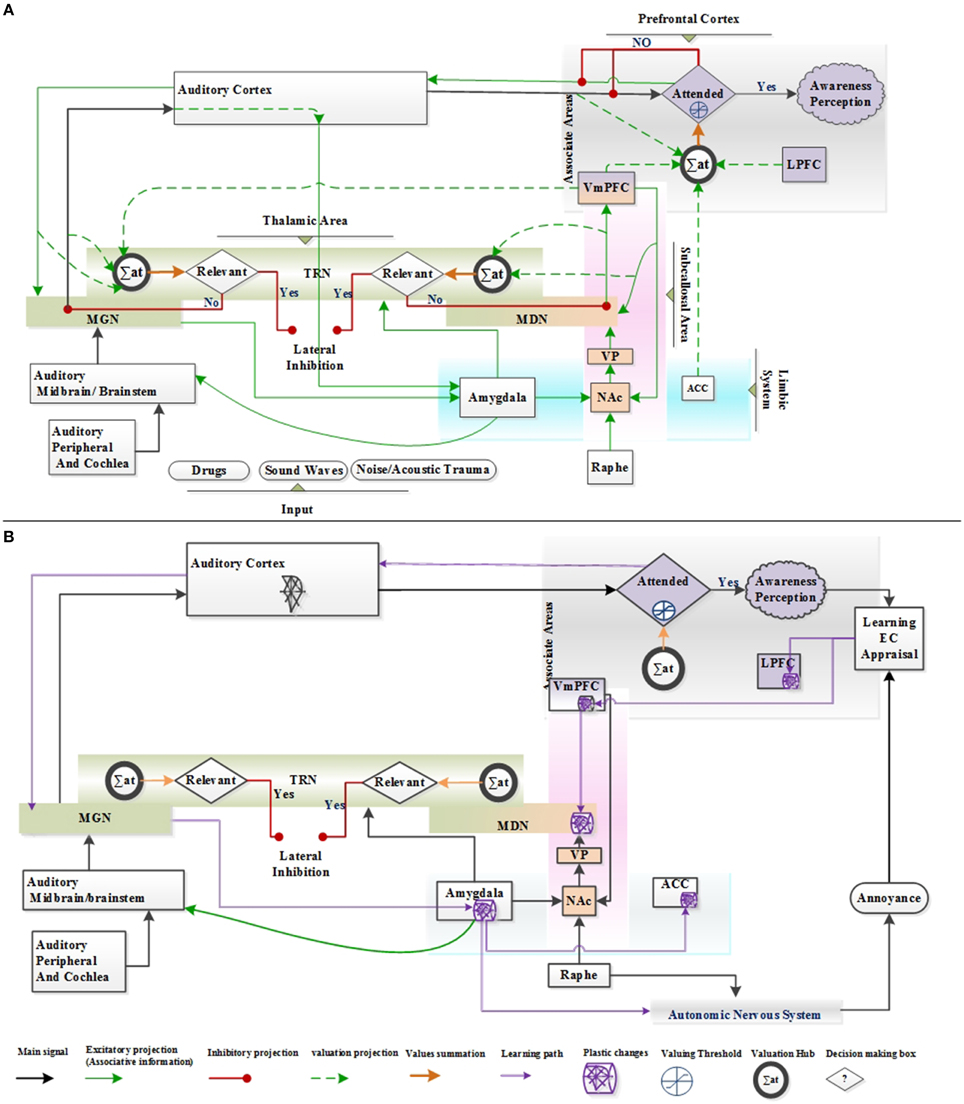 Frontiers | Theoretical Tinnitus Framework: A