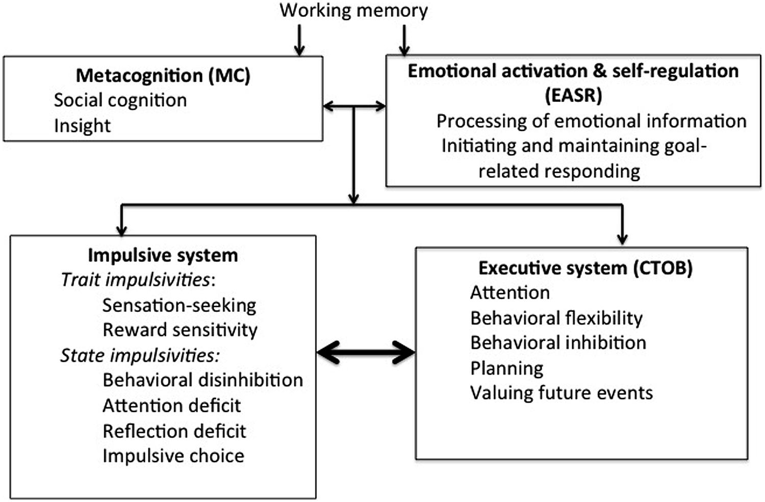 understanding the process of metacognitive development Cft assistant director thinking about ones thinking | putting metacognition into practice thinking about ones thinking 5-10-2017 understanding why students understanding the process of metacognitive development avoid writing by: regina g richards if parents and teachers understand why some students hate writing a non-linear process.