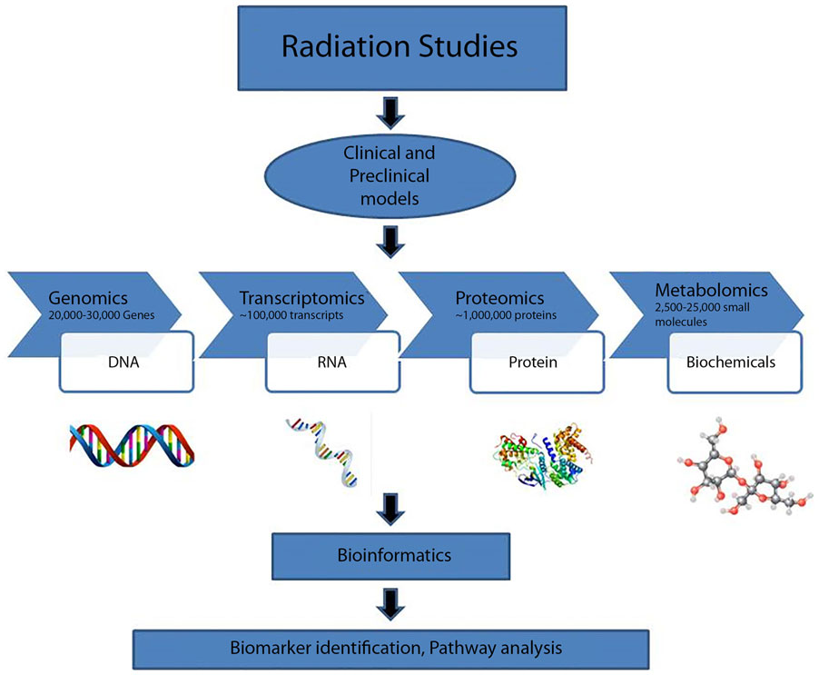 Frontiers Radiation Metabolomics Current Status And