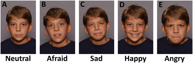Figure 3 - Most emotional information is broadcast from our faces.