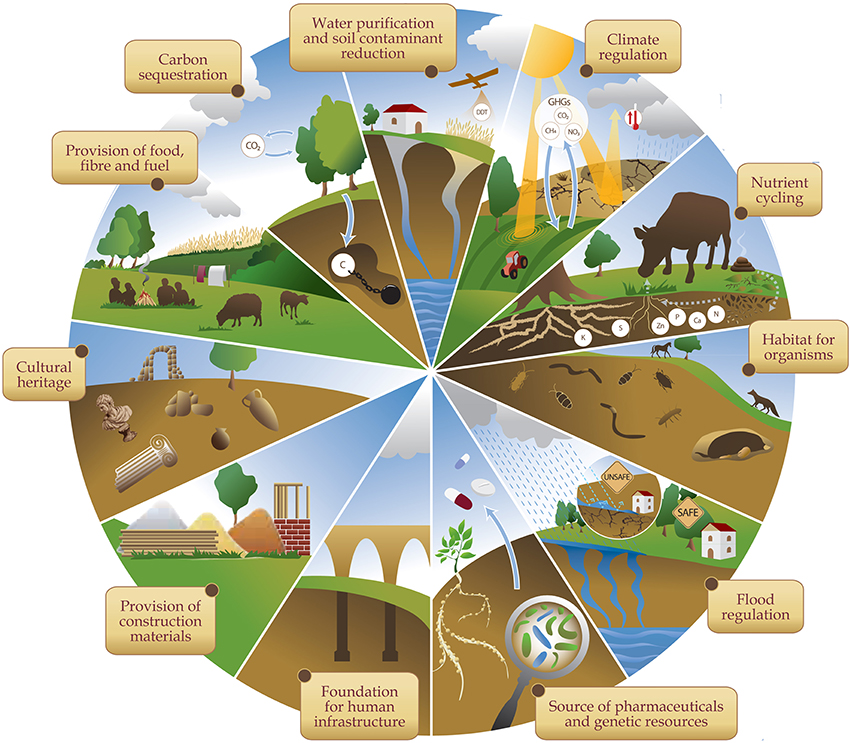 Frontiers soil ecosystem services and natural capital for Soil resources definition