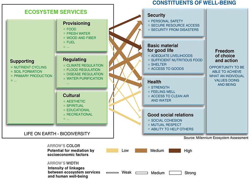 Frontiers Soil Ecosystem Services And Natural Capital Critical