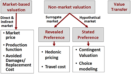 estimating cost of capital in uncertain Relevant risks in the estimation of the cost of capital  in light of recent  increased stock market volatility and uncertainty, which may prevail.