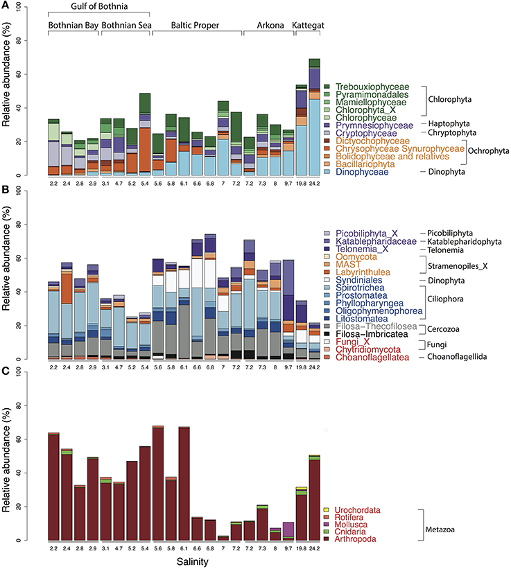 Frontiers | Diversity of Pico- to Mesoplankton along the