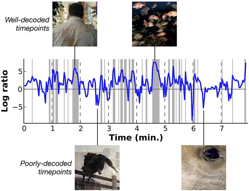 Frontiers | Decoding the Semantic Content of Natural Movies from