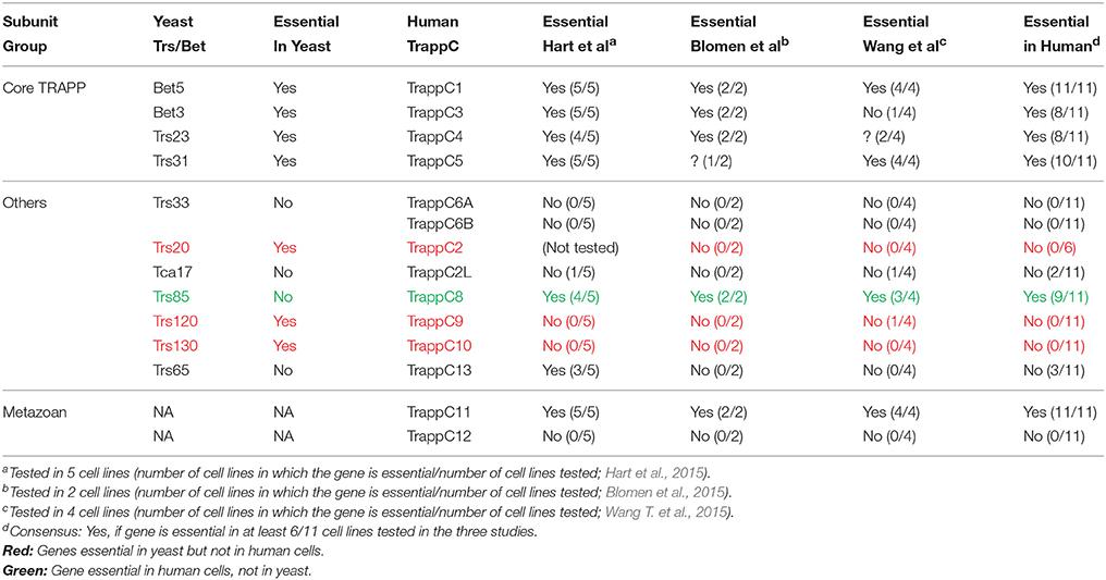 Yeast Assignment Through Different Room Temperature