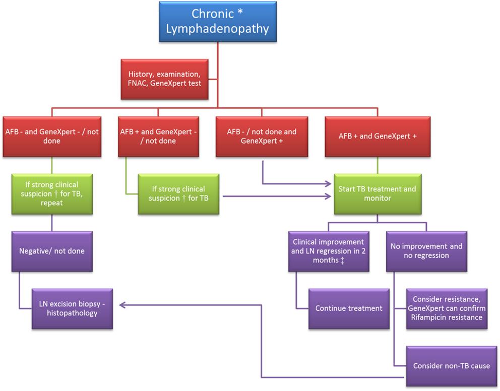 Frontiers Lymphadenopathy Differentiation Between