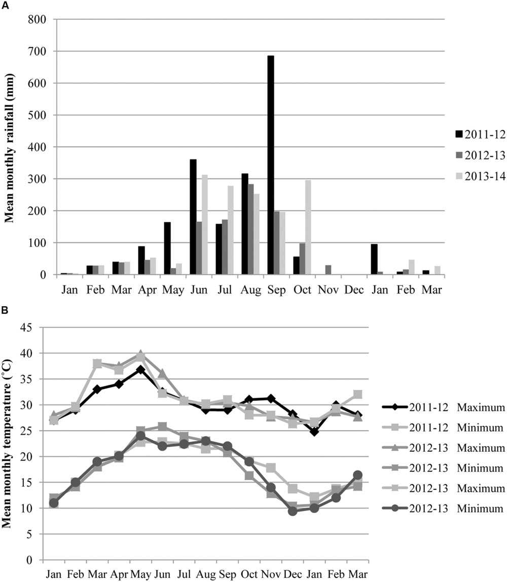 Frontiers | Conservation Agriculture Practices in Rainfed Uplands of