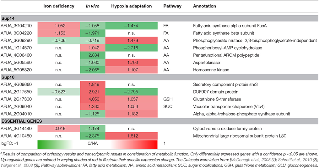 Frontiers | Systematic Identification of Anti-Fungal Drug Targets by ...
