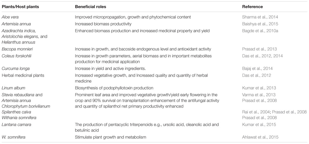 Piriformospora indica: Sebacinales and Their Biotechnological Applications: 33 (Soil Biology)