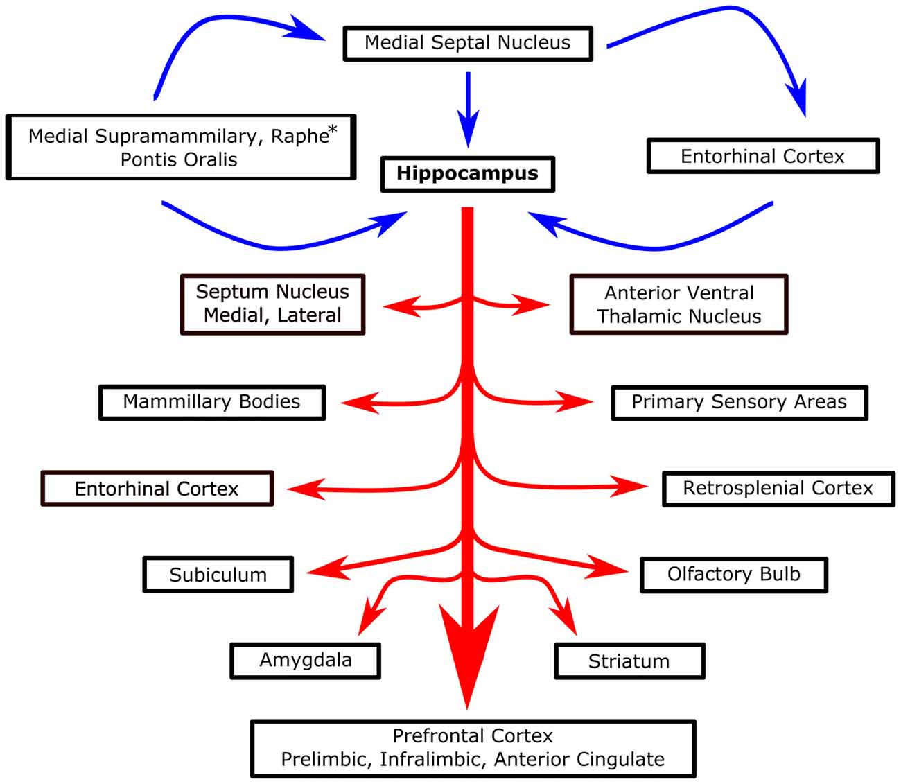 Frontiers Making Waves In The Brain What Are Oscillations And Series Circuit Wchaverri39s Blog