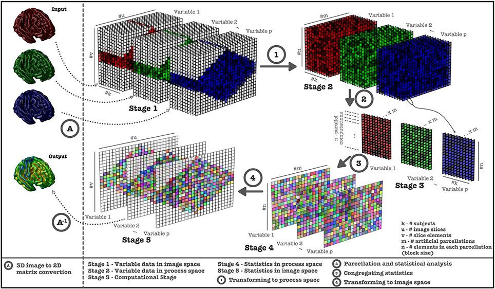 Frontiers | VoxelStats: A MATLAB Package for Multi-Modal