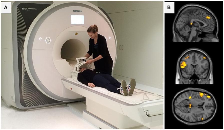 איור 1 - (A) שניים מחברי צוות המחקר שלנו שמראים לכם מצלמת MRI וכיצד משתמשים בה.