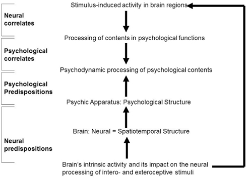 Frontiers Psychoanalysis And The Brain Why Did Freud Abandon