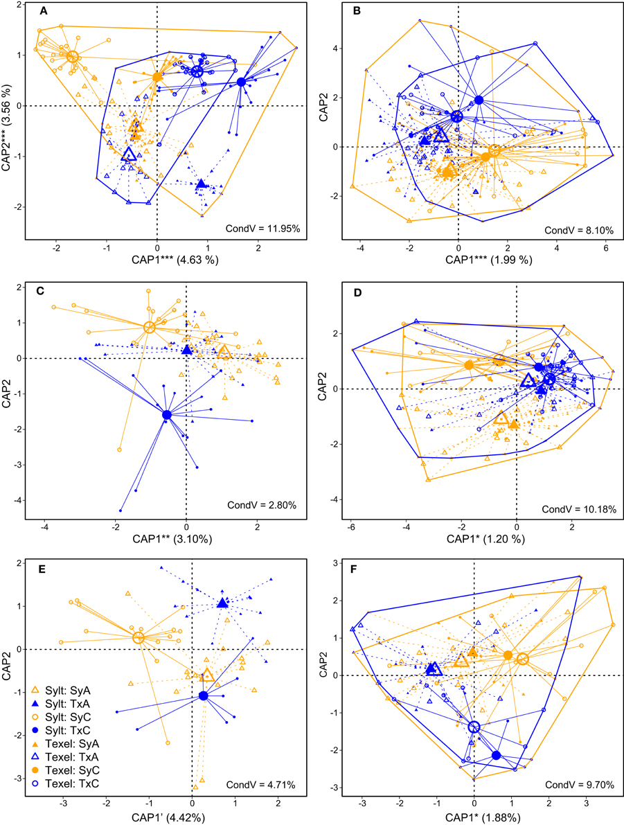Frontiers | Spatial and Temporal Dynamics of Pacific Oyster