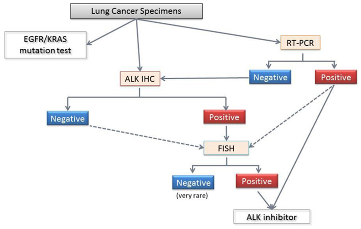 Frontiers a screening method for the alk fusion gene in for Fish test for cancer