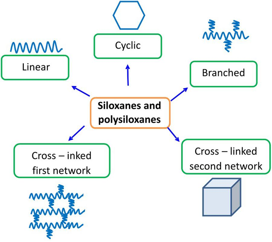 Frontiers Direct Human Contact With Siloxanes Silicones