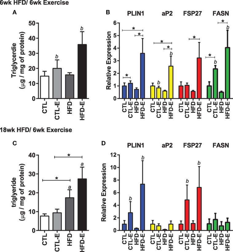 A High Fat Diet and theThr54 polymorphism of FABP2 Reduces Plasma Triglyceride-Rich Lipoproteins
