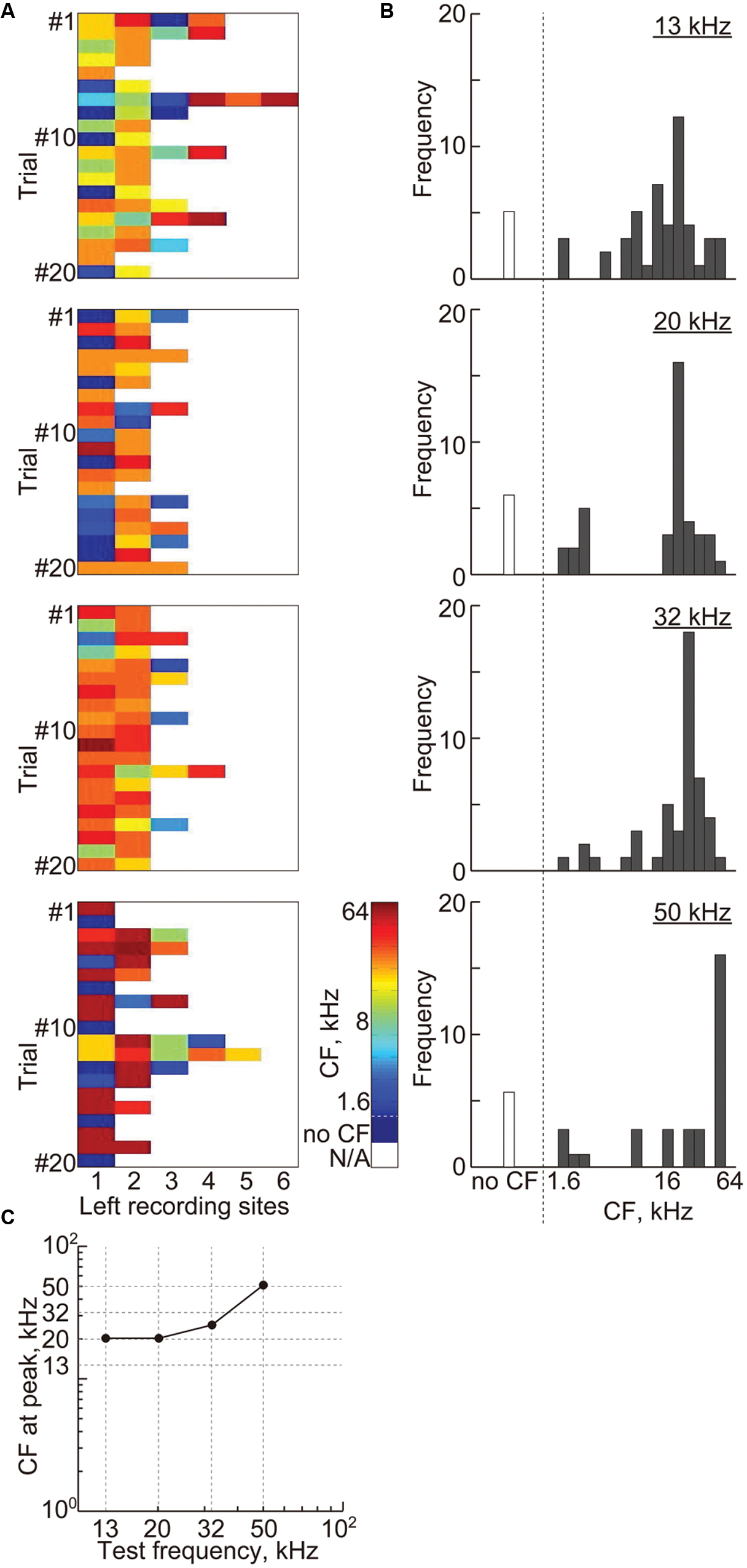 Frontiers   Tonotopic and Field-Specific Representation of